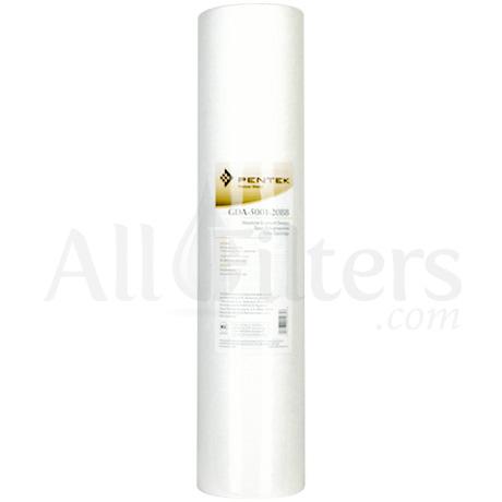 Pentek GDA-5001-20BB